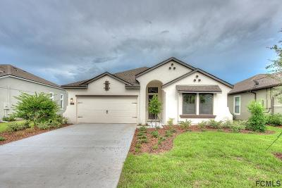 Ormond Beach Single Family Home For Sale: 620 Elk River Drive