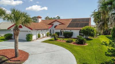 Palm Coast Single Family Home For Sale: 17 Colonial Ct