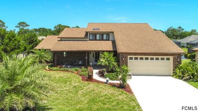 Palm Coast Single Family Home For Sale: 29 Cheyenne Court