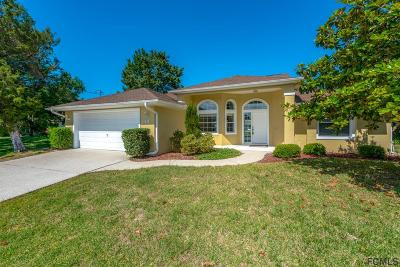 Palm Coast Single Family Home For Sale: 14 Coleridge Court