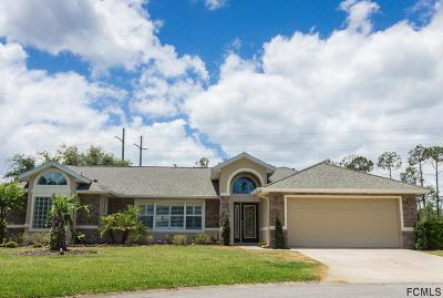 Ormond Beach Single Family Home For Sale: 99 Bay Lake Dr
