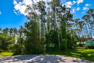 Pine Grove Residential Lots & Land For Sale: 12 Pointer Place