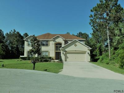 Indian Trails Single Family Home For Sale: 18 Burgess Place