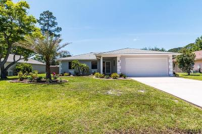 Palm Coast Single Family Home For Sale: 45 Bracken Lane