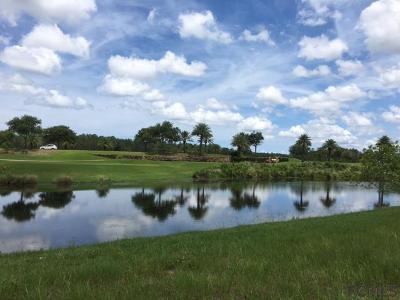 Conservatory At Hammock Beach Residential Lots & Land For Sale: 349 Hibiscus Way