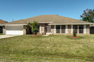 Palm Coast Single Family Home For Sale: 11 Freeland Lane