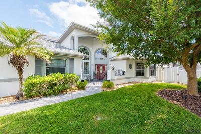 Palm Coast Single Family Home For Sale: 24 Creek Court