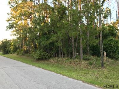 Matanzas Woods Residential Lots & Land For Sale: 88 Lancelot Drive
