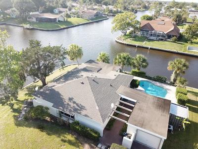Palm Harbor Single Family Home For Sale: 9 Cameo Court