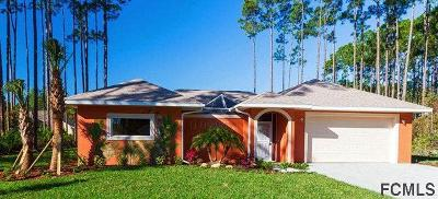 Palm Coast Single Family Home For Sale: 17 Emmons Lane