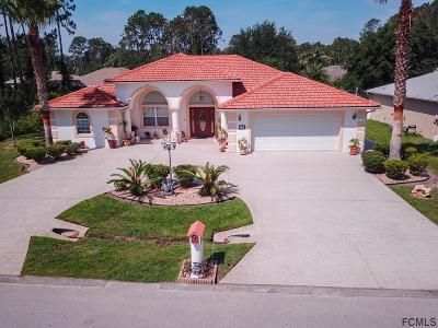 Palm Coast Single Family Home For Sale: 244 Boulder Rock Drive