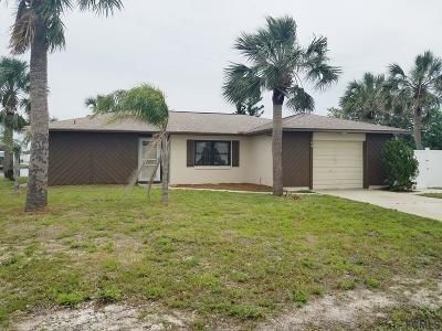 Flagler Beach Single Family Home For Sale: 164 Avalon Ave