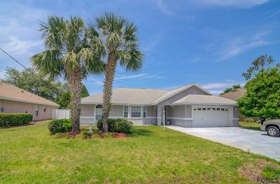 Palm Coast Single Family Home For Sale: 23 Woodworth Drive