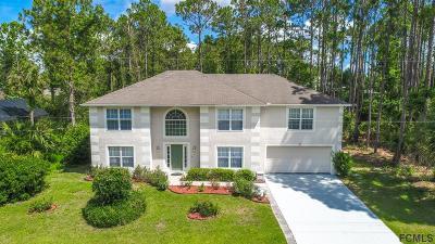 Palm Coast Single Family Home For Sale: 55 Bainbridge Ln