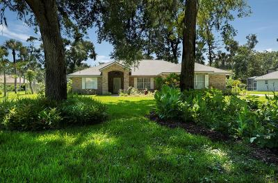 Ormond Beach Single Family Home For Sale: 4008 Acoma Dr
