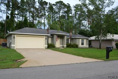 Palm Coast Single Family Home For Sale: 74 Ryland Drive