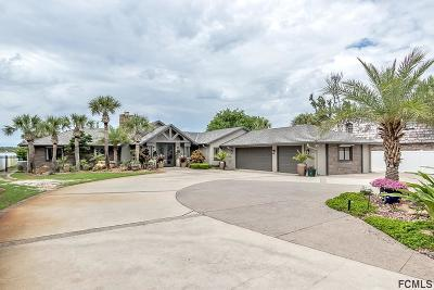 Ormond Beach Single Family Home For Sale: 806 Riverside Dr