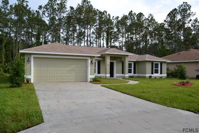Palm Coast Single Family Home For Sale: 39 Rymer Lane