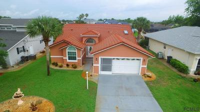 Palm Coast Single Family Home For Sale: 37 Comanche Court