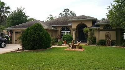 Palm Coast Single Family Home For Sale: 146 Eric Drive