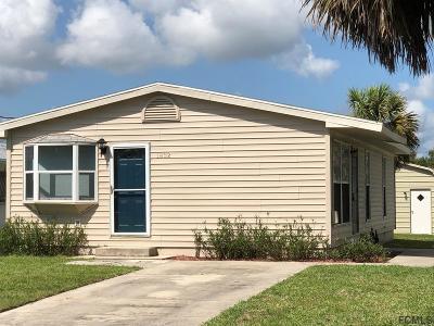 Flagler Beach Single Family Home For Sale: 1832 S Daytona Ave