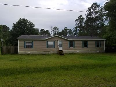 Flagler County Single Family Home For Sale: 4163 Oleander Avenue