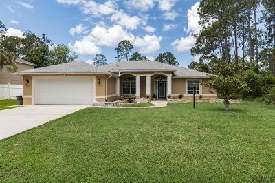 Palm Coast Single Family Home For Sale: 47 Bridgehaven Drive