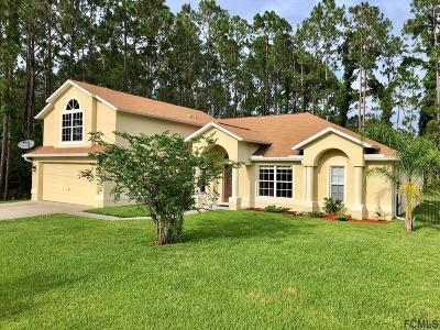 Palm Coast Single Family Home For Sale: 68 Ryder Drive