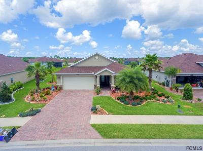 Palm Coast Single Family Home For Sale: 34 Auberry Dr