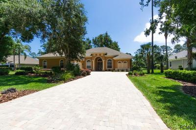 Palm Harbor Single Family Home For Sale: 13 Clementina Court