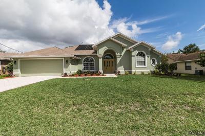 Palm Coast FL Single Family Home For Sale: $255,000