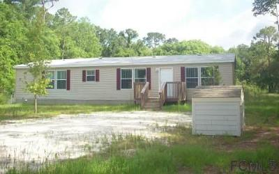 Bunnell Single Family Home For Sale: 87 Falcon Fire Pl