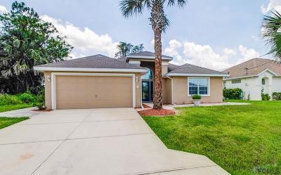 Palm Coast Single Family Home For Sale: 8 College Court