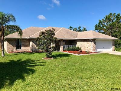 Indian Trails Single Family Home For Sale: 9 Buffalo Meadow Lane