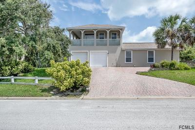 Ormond Beach Single Family Home For Sale: 3685 John Anderson Dr