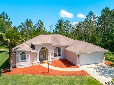 Matanzas Woods Single Family Home For Sale: 44 Leidel Dr