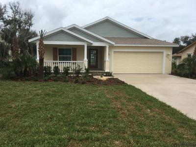 Flagler Beach Single Family Home For Sale: 2412 S Daytona Ave