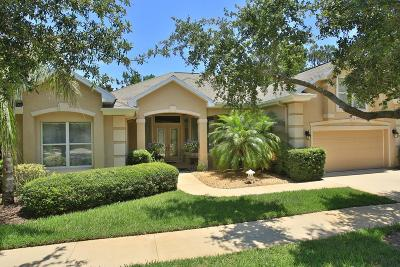 Flagler County Single Family Home For Sale: 19 Egret Drive