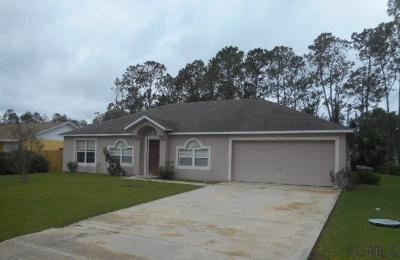 Palm Coast Single Family Home For Sale: 9 Rae Drive