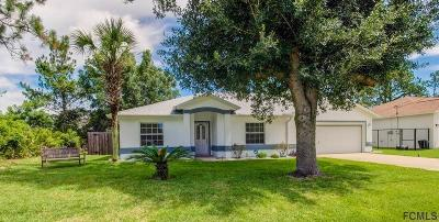 Palm Coast Single Family Home For Sale: 21 Rockwell Ln