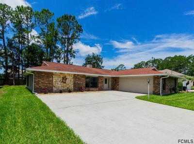 Palm Coast Single Family Home For Sale: 29 Webb Lane