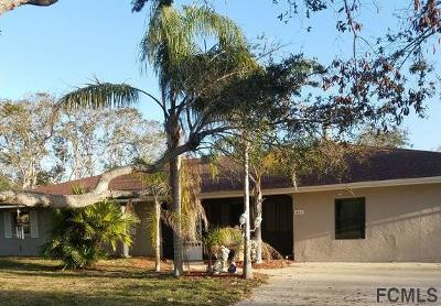 Flagler County Single Family Home For Sale: 411 19th St S