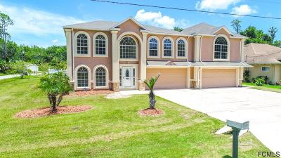 Flagler County Single Family Home For Sale: 1 Sea Shark Path