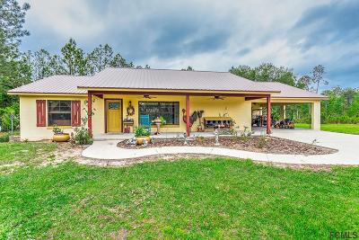 Flagler County Single Family Home For Sale: 215 Twin Lakes Rd