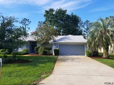 Palm Coast Single Family Home For Sale: 220 London Dr