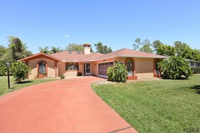 Palm Coast Single Family Home For Sale: 102 Forest Hill Drive