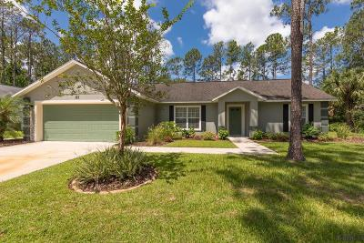 Palm Coast Single Family Home For Sale: 21 Karat Path