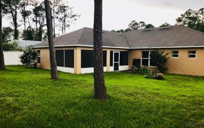 Palm Coast Single Family Home For Sale: 32 Ryder Drive