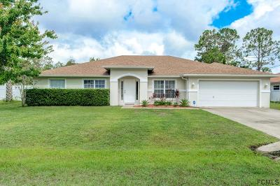 Flagler County Single Family Home For Sale: 22 Princess Kim Ln