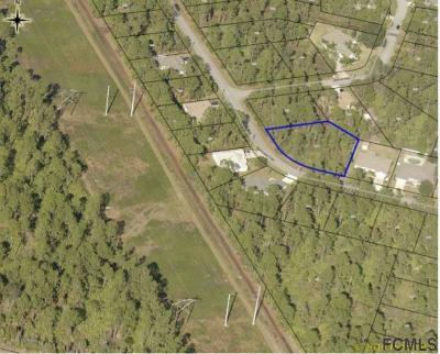 Seminole Woods Residential Lots & Land For Sale: 168 Underwood Trl
